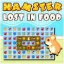 Hamster lost in food - matching game